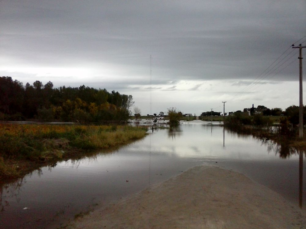Stell dir vor, es ist Hochwasser und keinen kümmert's
