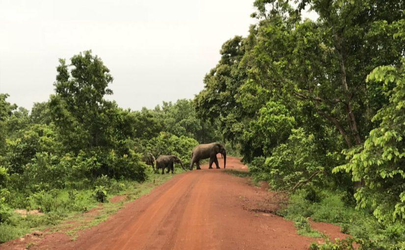 Reisen in Ghana – der Norden