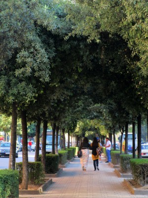 Impressions of Tirana_16