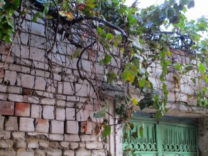 Impressions of Tirana_23